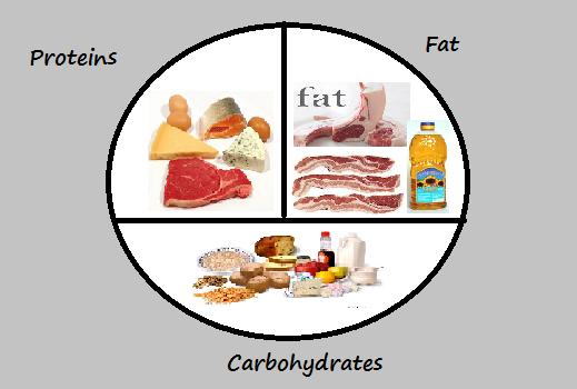 Carbs Fat Protein 66